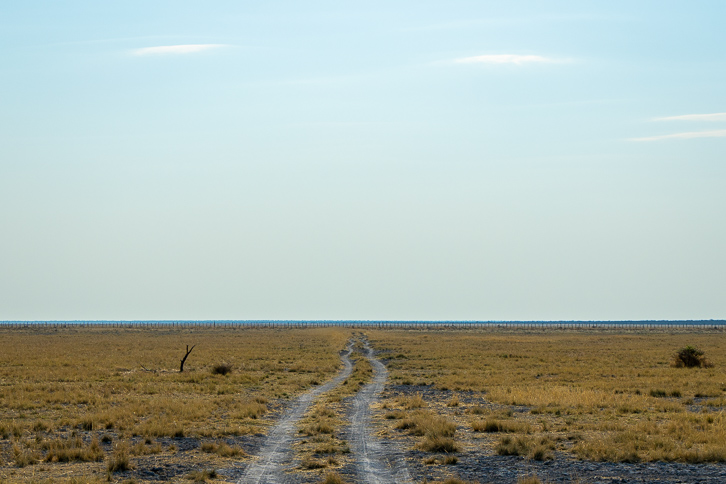 Feldstrasse im Onguma Private Game Reserve