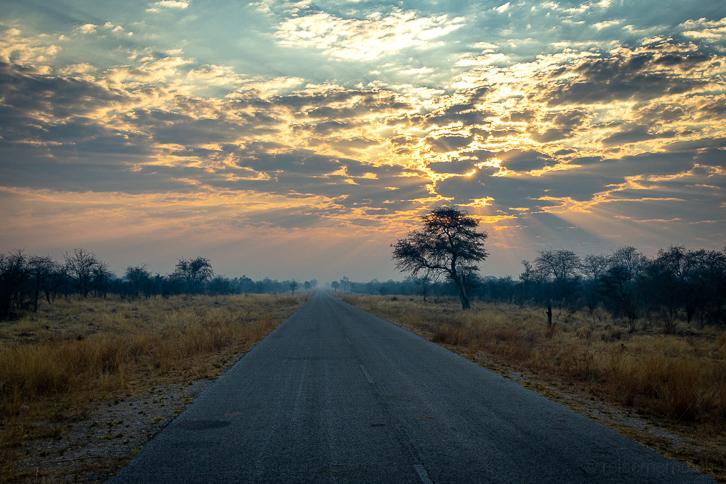 Asphaltierte Zufahrt zum Etosha Nationalpark